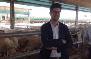 Riccardo Artegiani nel suo allevamento a Isola della Scala