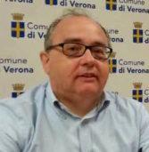 Verona, i buu allo stadio e le dichiarazione di Castellini: Bertucco (Sinistra): «Il consiglio comunale condanni senza se e senza ma»