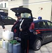 Bonavicina, arrestato dai Carabinieri di Legnago mentre ruba 170 litri di gasolio