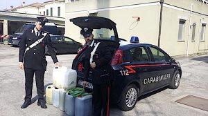 Carabinieri benzina