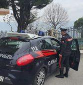 Tregnago, tenta un furto in un'abitazione: giovane arrestato dai carabinieri