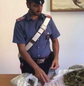 Colognola ai Colli, 24 enne arrestato con 1 chilo di hashish e Marijuana