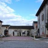 Verona, domenica a Corte Molon il Festival Scaligero delle Discipline Olistiche