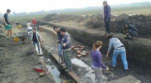 Cotta archeologia