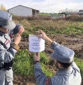Grezzana, allevatore sversava liquami nei campi: sequestrati dalla Forestale