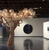 Verona, domani riapre la Galleria d'Arte Moderna a Palazzo della Ragione