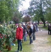 """Legnago, è la domenica di """"Floramarket"""" assieme a """"Antiquaria"""""""