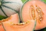 Isola della Scala, fino al 3 giugno la 16. Festa provinciale del Melone