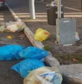San Bonifacio, un cittadino: «Qui la raccolta funziona, manca il senso civico»