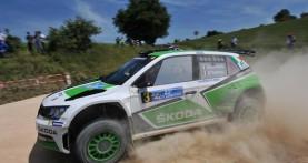 Scandola domina il Rally dell'Adriatico con la Skoda Fabia R5