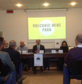"""Turismo, l'area del Soave, riconosciuta Patrimonio agricolo mondiale, lancia il progetto """"Volcanic Wine Park"""""""