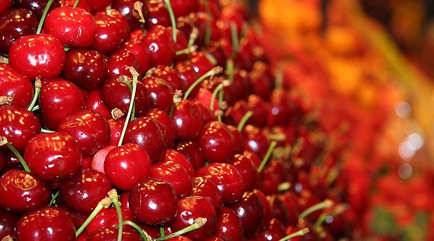 Monteforte d'Alpone, domani il via alla Festa delle ciliegie e del Vin Santo