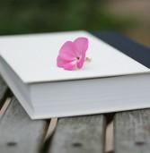 """Legnago, reading del """"Diario di Anna Frank"""" ed altri testi alla Libreria Ferrarin"""