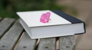 libro-primavera
