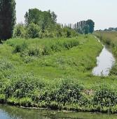"""Bovolone, sabato la """"Passeggiata per oasi e campagne"""""""
