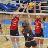 """A Verona il """"Memorial Stefano Scabari"""" con le stelle del volley  femminile"""