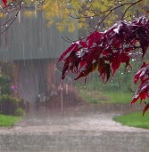 """Maltempo, allarme """"giallo"""" in tutto il Veneto per forti piogge da questa sera"""