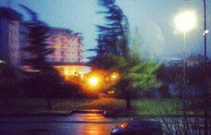 vento-alberi-08