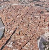 Verona, cittadino colpito da febbre Dengue: disinfestazione del quartiere