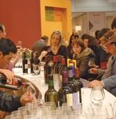 """Verona, in Gran Guardia il """"Soave Versus"""", festival del grande vino bianco"""